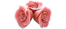 Rosa marsipanrosor 12 st
