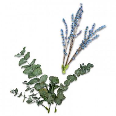 Torkade blommor - eukalyptus och blå-lila lavendel